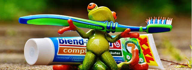 Illustration of a green frog standing in front of toothpaste while holding a toothbrush